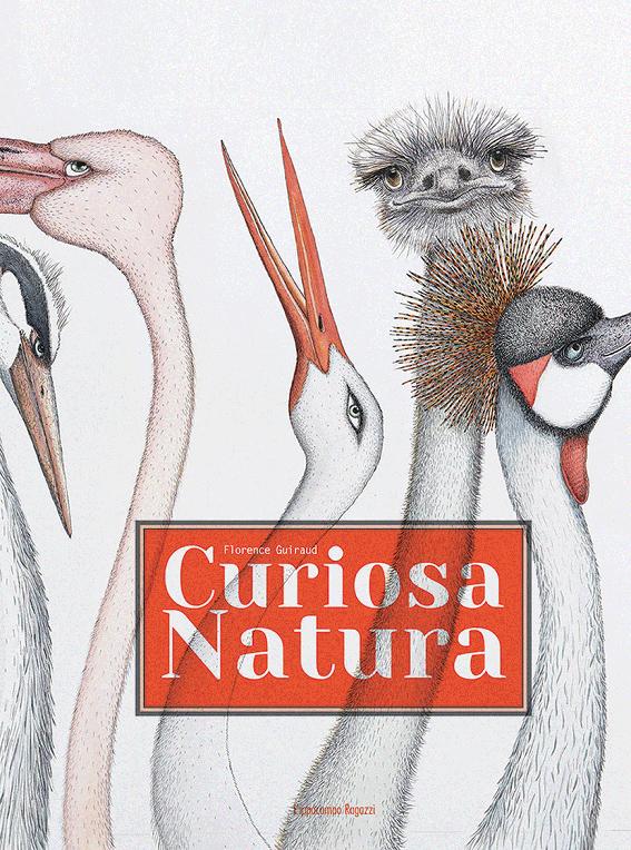 finalista premio andersen 2018 curiosa natura