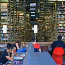 Un appello ai bibliotecari