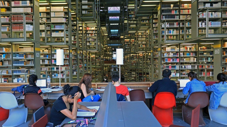 risorse biblioteche